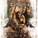 amazon-evergrey